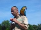 Ausflug Walsrode Juni 2010